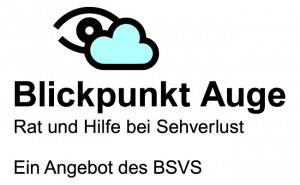Blickpunkt Auge Logo