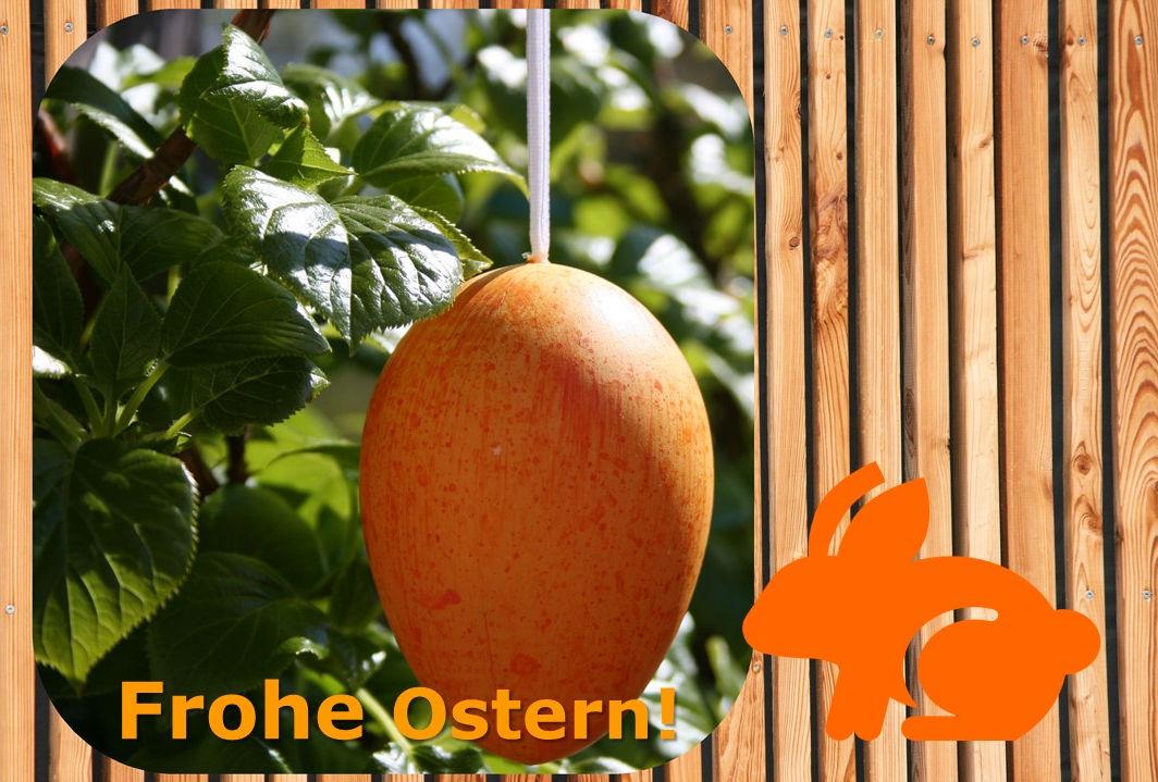 """Fotomontage: Im Hintergrund befindet sich ein Holzzaun. Auf der linken Seite im Bild hängt ein großes Osterei an einer Kletterhortensie. Darunter steht der Schriftzug """"Frohe Ostern!"""". Rechts auf dem Bild ist ein Piktogramm von einem Hasen."""